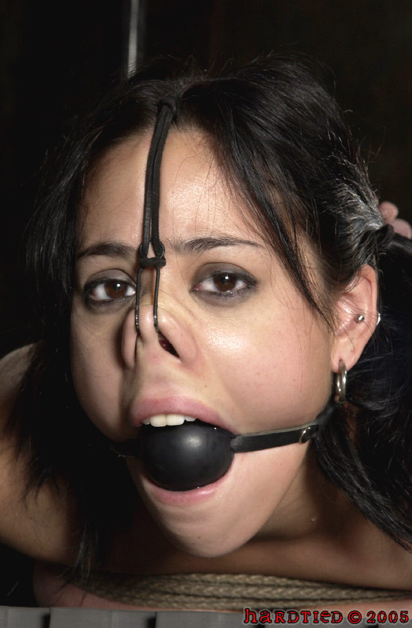Profile Picture for artofbondage